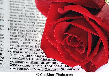 stemningsfuld, rød, rosenknop