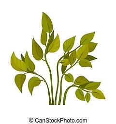 Stems with green leaves. Vector illustration on a white background.