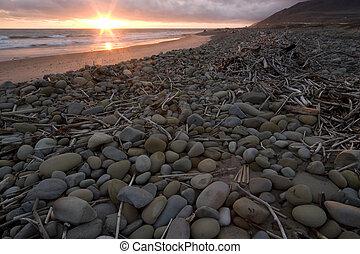 stenen, b, drijfhout