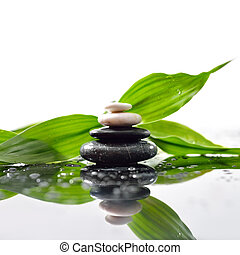 stenen, piramide, bladeren, zen, oppervlakte, groene, op, waterdrops