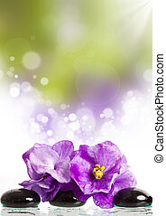 stenen, roze bloem, behandeling, spa, masseren