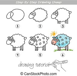 Step by step drawing Sheep
