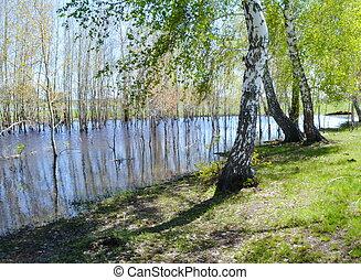 steppe, e, lago