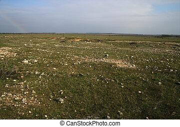 Steppe grassland, black sea coast, Bulgaria