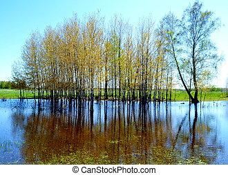 steppe, lago
