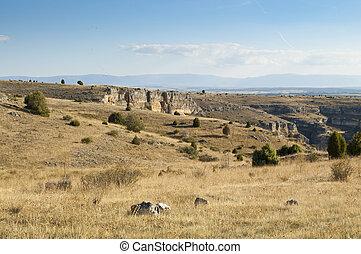 Steppe on the moors of the Hoces del Rio Duraton Natural Park, Segovia Province, Spain. The tree vegetation consists of Juniper tree (Juniperus thurifera)
