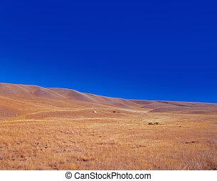 Steppe, prairie with blue sky