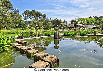 Stepping stones in Logan Botanic Gardens - View of stepping...