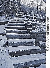 Steps in Winter Landscape