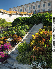 Steps up Alcatraz Garden with Prison in the background -...
