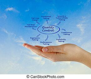 steuerung, qualität