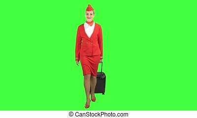 Stewardess walks and rolls the suitcase. Green Screen
