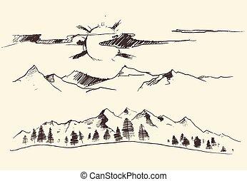 stich, berge, vektor, wald, konturen