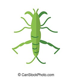 stick insect over white background, flat style icon, vector illustration