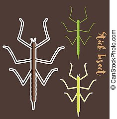 Stick Insects Vectors Illustration