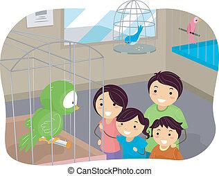 stickman, 家族ペット, 店, 鳥, 購入
