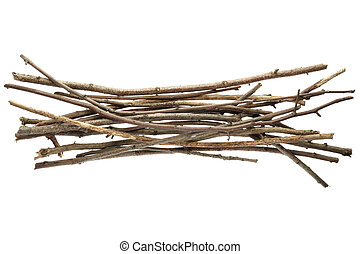 Sticks and twigs, wood bundle isolated on white background