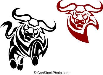 stier, en, buffel, mascots