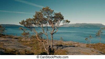 Stil, -, cinematic, norwegisch, Fjord, entlang, episch,...