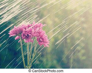 stil, gammal, årgång, regna, retro blommar
