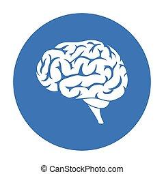 stil, illustration., hjärna, symbol, isolerat, bakgrund., vektor, svart, vit, ikon, organs, block