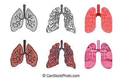 stilar, teckning, teckningar, mänsklig, lungan, olik