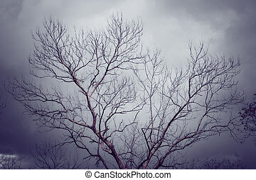 stile, silhouette, vendemmia, albero, effetto, filtro, retro