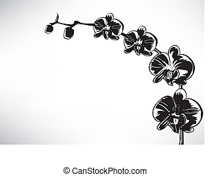 stilisiert, orchidee