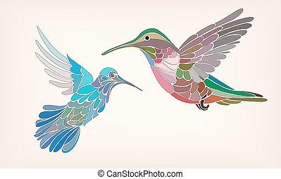 stilizált, kolibri, vektor, két, ábra