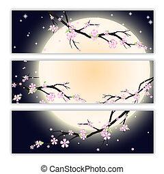 stilizzato, ciliegia, blossom., cartelle, invito