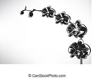 stilizzato, orchidea
