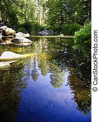 Still Creek - Reflections on Oak Creek, Arizona