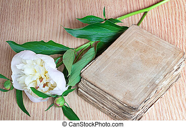 Still life: ancient book and white flower of a peony.