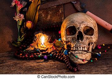 still life flower with skull