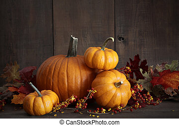 Still life harvest with pumpkins and gourds