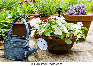Still life in a garden