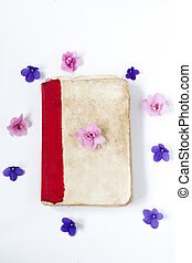 still life interior decoration pink flower on retro book on white table background