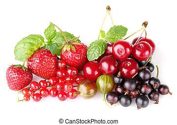 still life of berry