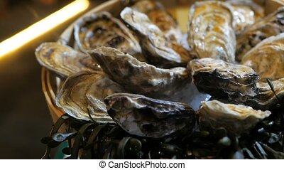 Still-life of fresh oysters on ice lies on a plate in a...