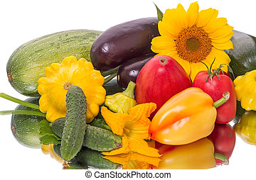Still life of vegetables on white