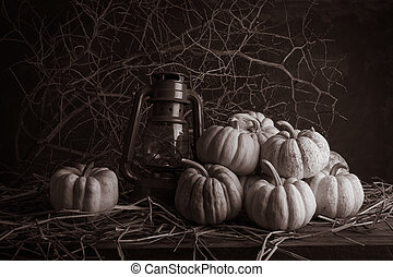 still life pumpkins