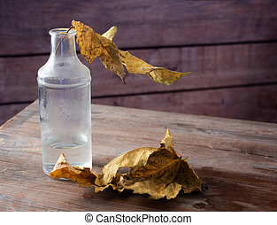 Still life with a bottle of dust and autumn dry leaves