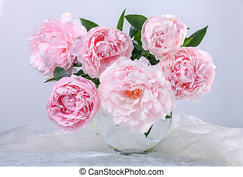 beautiful pink peonies - Still life with beautiful pink...