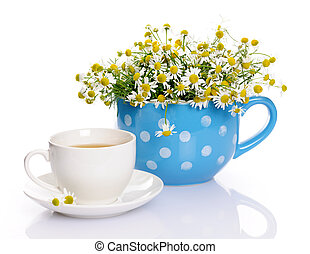 Still life with chamomile