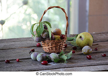still life with fresh plums and pears