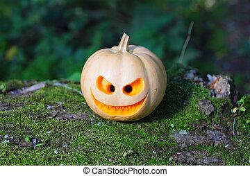 Still life with halloween pumpkin