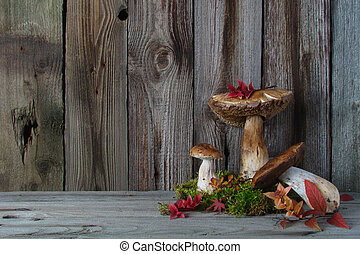Still life with mushrooms, autumn leaves moss
