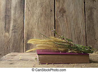 Still life with old book and flower foxtail weed in golden light