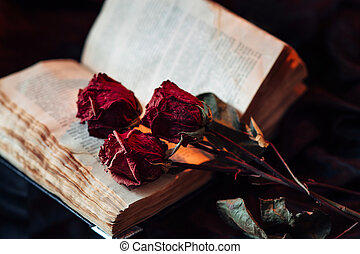 Still life with old book and roses