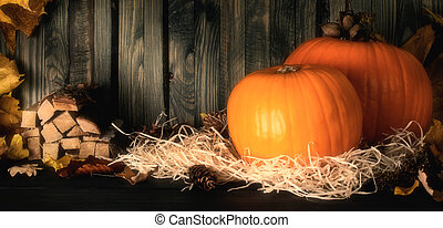 Still life with pumpkins for Thanksgiving day
